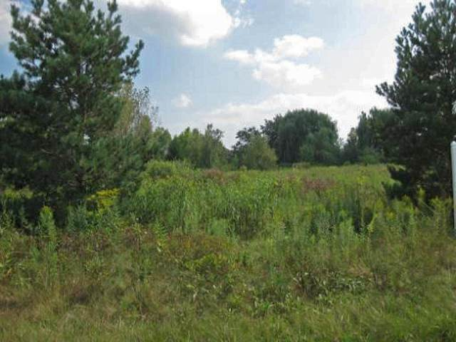 Lot 8 Andover Road, Wadsworth, IL 60083 (MLS #10808526) :: Property Consultants Realty
