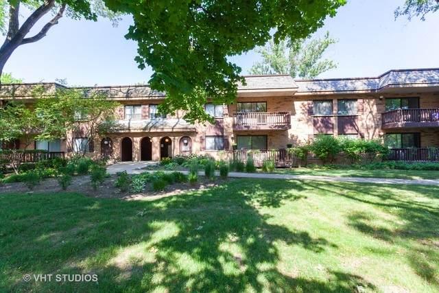 8020 Woodglen Lane #103, Downers Grove, IL 60516 (MLS #10808547) :: John Lyons Real Estate