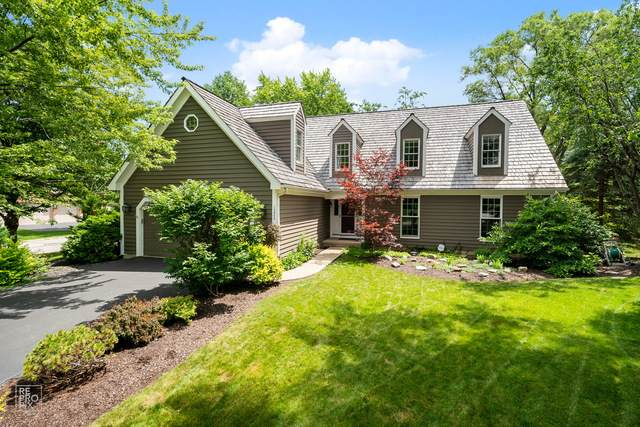1223 W Groh Court, Palatine, IL 60067 (MLS #10808574) :: Ani Real Estate