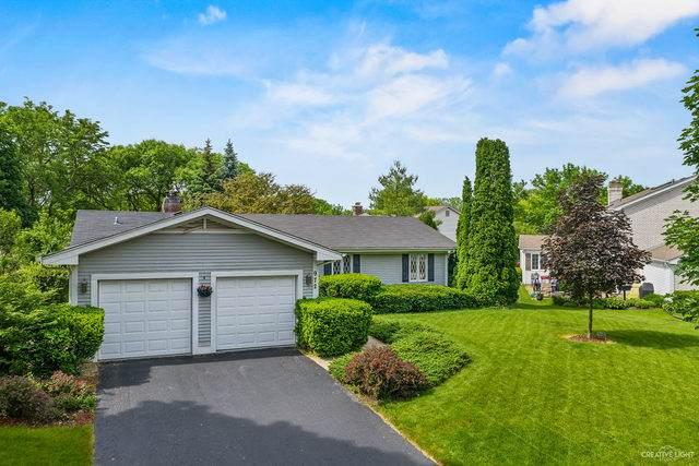 972 W Bauer Road, Naperville, IL 60563 (MLS #10808639) :: Angela Walker Homes Real Estate Group