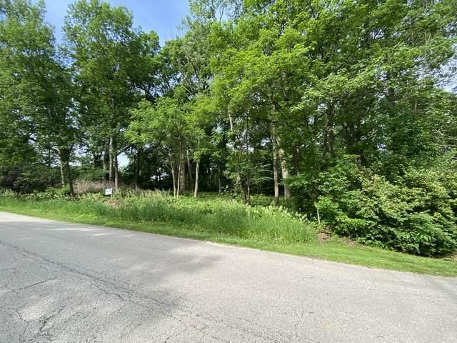 12412 Mackinac Road, Homer Glen, IL 60491 (MLS #10808890) :: Lewke Partners