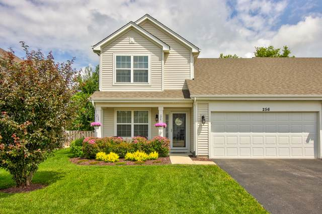 256 Maryland Lane, Pingree Grove, IL 60140 (MLS #10808950) :: Angela Walker Homes Real Estate Group