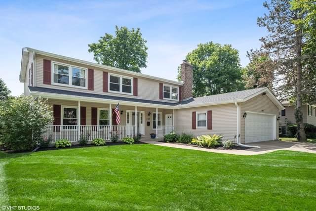 103 S Cedar Street, Palatine, IL 60067 (MLS #10809119) :: Ani Real Estate