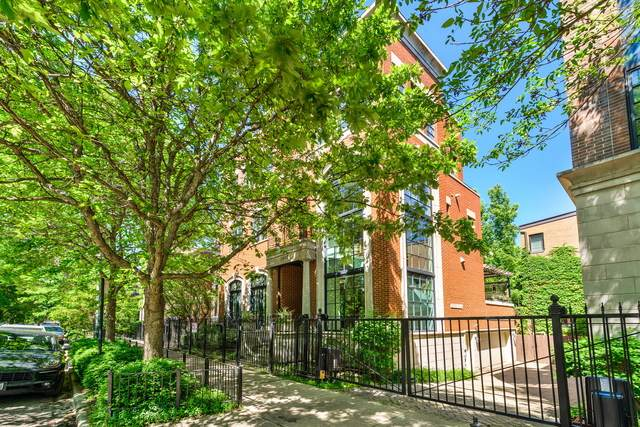 1807 N Fremont Street, Chicago, IL 60614 (MLS #10809192) :: Property Consultants Realty