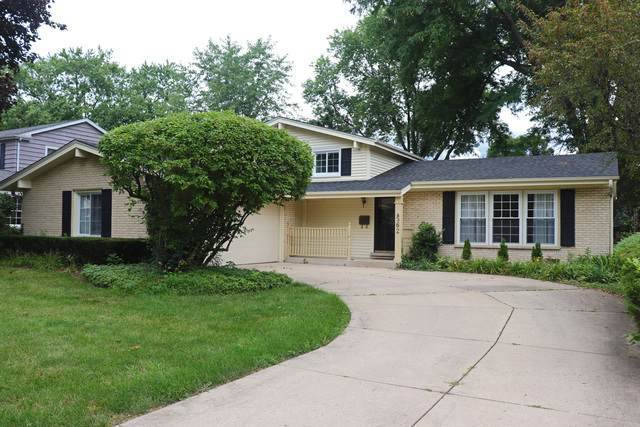 562 E Mill Valley Road, Palatine, IL 60074 (MLS #10809299) :: Ani Real Estate