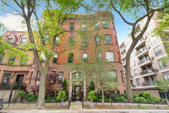 456 W Deming Place 1W, Chicago, IL 60614 (MLS #10809416) :: Property Consultants Realty