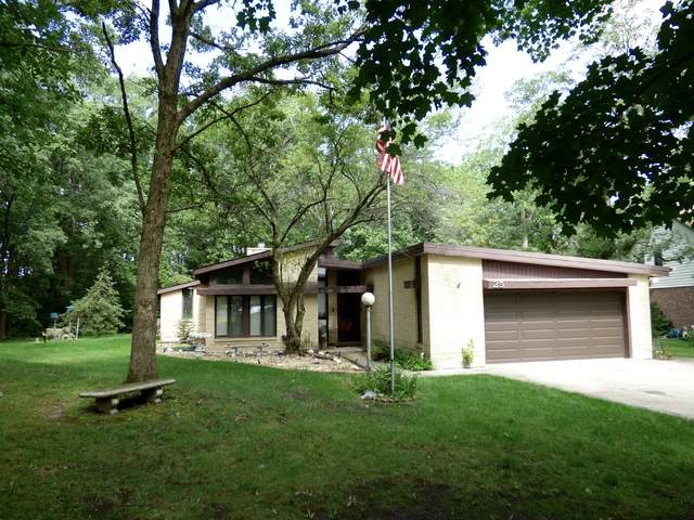 25 Arthur Court, Crete, IL 60417 (MLS #10809748) :: Angela Walker Homes Real Estate Group