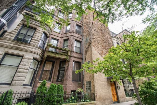 63 E Cedar Street 3AB, Chicago, IL 60611 (MLS #10809757) :: Property Consultants Realty