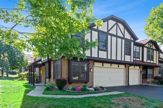 221 Wildwood Court, Bloomingdale, IL 60108 (MLS #10809794) :: John Lyons Real Estate