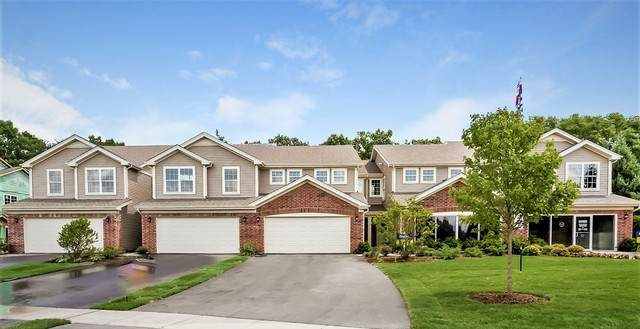 1293 West Lake Drive, Cary, IL 60013 (MLS #10809838) :: The Spaniak Team