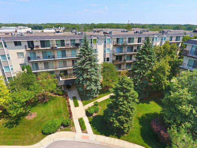 8620 Waukegan Road #401, Morton Grove, IL 60053 (MLS #10810158) :: Property Consultants Realty