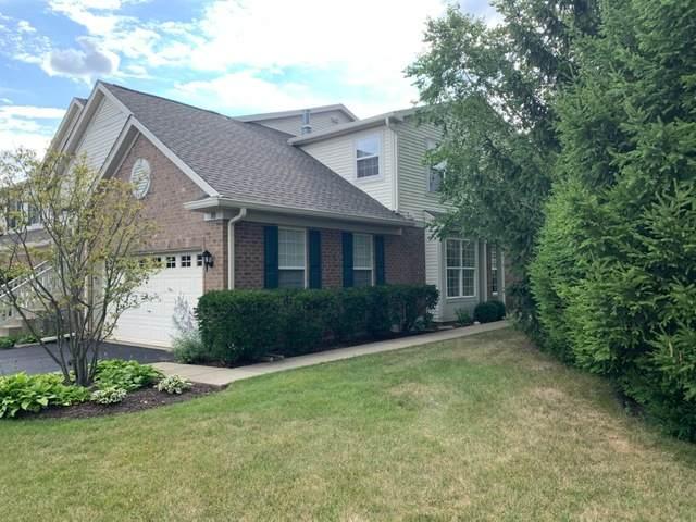 10 Christie Court #10, Algonquin, IL 60102 (MLS #10810254) :: Ryan Dallas Real Estate