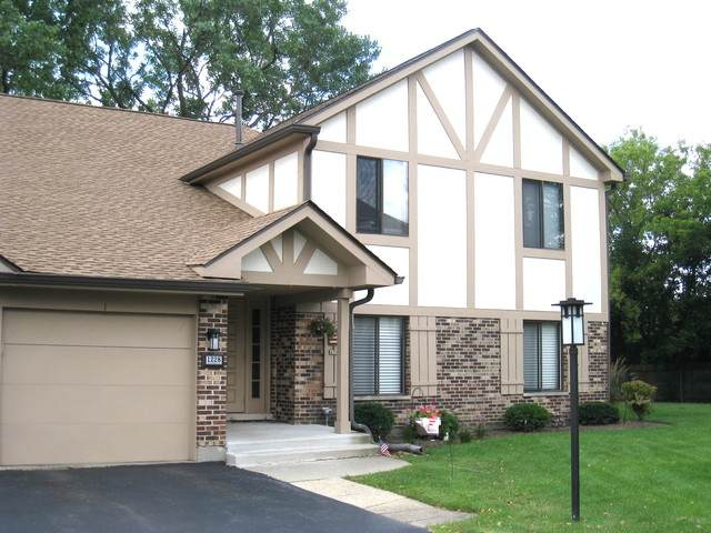 1228 Knottingham Court 1B, Schaumburg, IL 60193 (MLS #10810603) :: Angela Walker Homes Real Estate Group