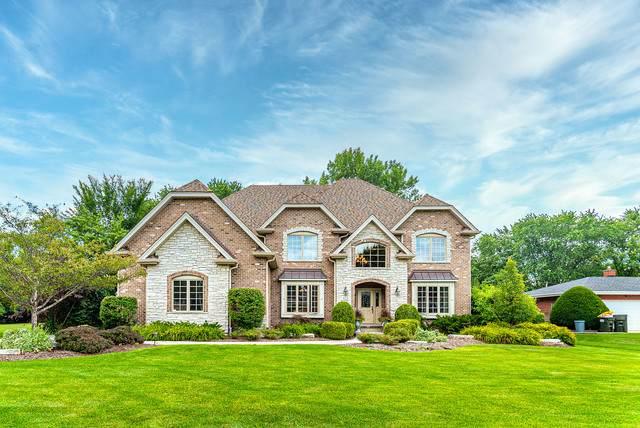 423 E Niagara Avenue, Schaumburg, IL 60193 (MLS #10810677) :: John Lyons Real Estate
