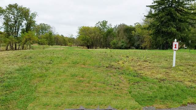 LOT 1 N Chicago Avenue, Wadsworth, IL 60083 (MLS #10810729) :: Property Consultants Realty