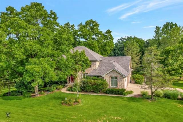 16471 S Parker Road, Homer Glen, IL 60491 (MLS #10810748) :: Property Consultants Realty