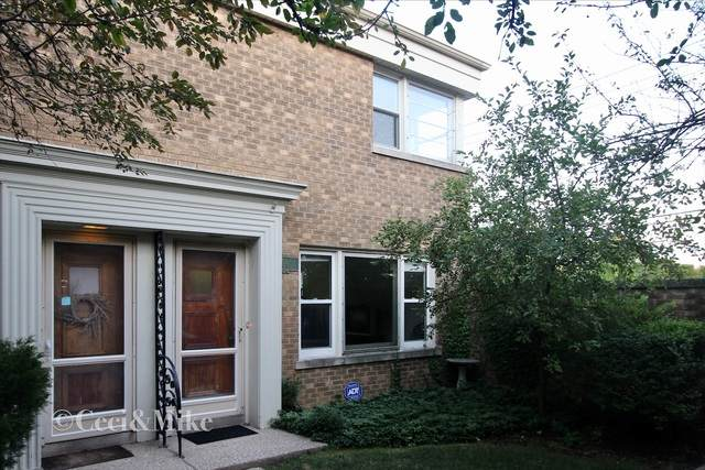208 South Boulevard F, Evanston, IL 60202 (MLS #10810786) :: Angela Walker Homes Real Estate Group