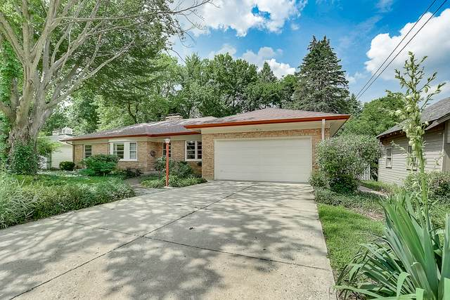 816 Murray Avenue, Elgin, IL 60123 (MLS #10810813) :: Angela Walker Homes Real Estate Group