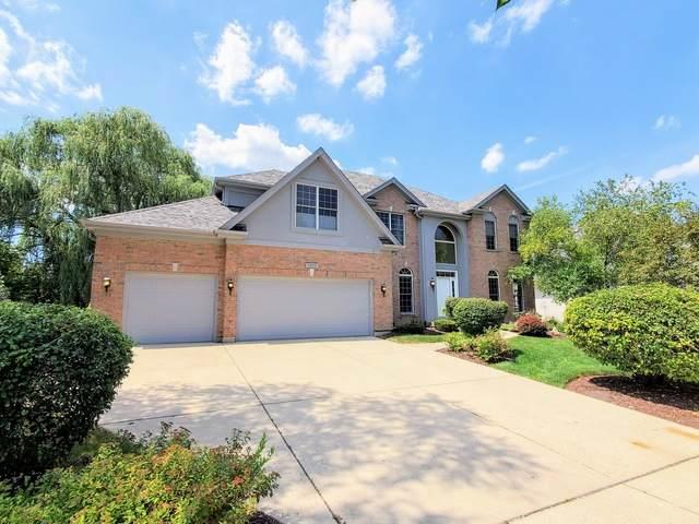 1250 N Lakeview Drive, Palatine, IL 60067 (MLS #10811162) :: Ani Real Estate