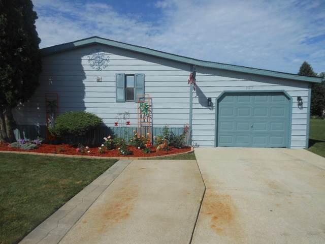 307 Briarbranch Terrace, Matteson, IL 60443 (MLS #10811210) :: John Lyons Real Estate