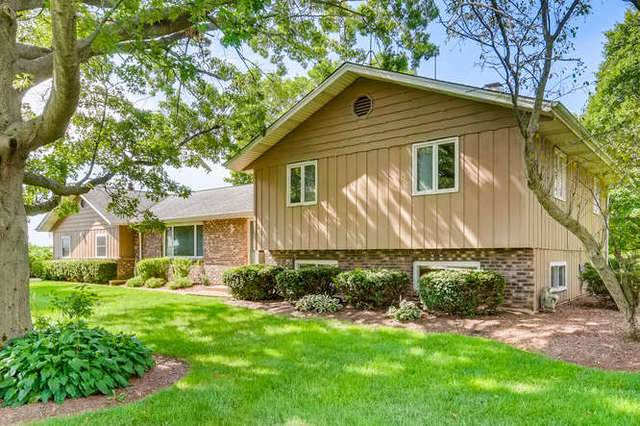 39W085 Cliff Drive, Elgin, IL 60124 (MLS #10811239) :: Knott's Real Estate Team