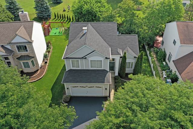 463 Topaz Lane, Bartlett, IL 60103 (MLS #10811269) :: John Lyons Real Estate