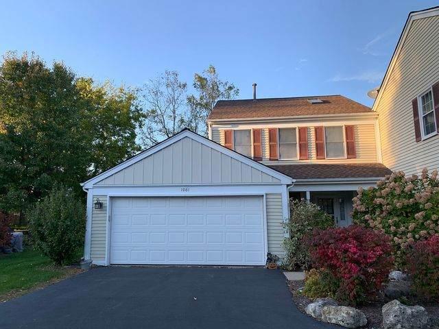 1061 Devonshire Avenue, Naperville, IL 60540 (MLS #10811300) :: John Lyons Real Estate