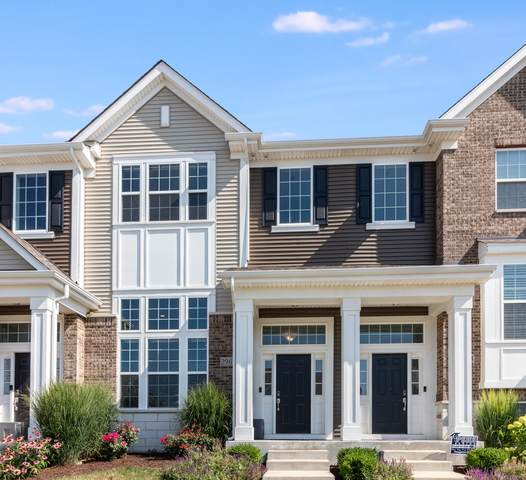 2962 Madison Drive, Naperville, IL 60564 (MLS #10811364) :: Littlefield Group