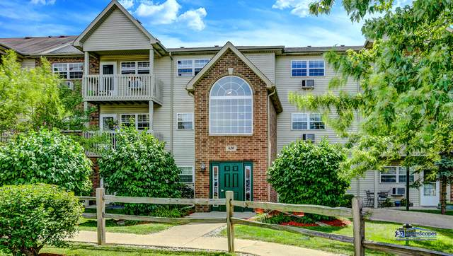 420 Cunat Boulevard 3B, Richmond, IL 60071 (MLS #10811475) :: Touchstone Group