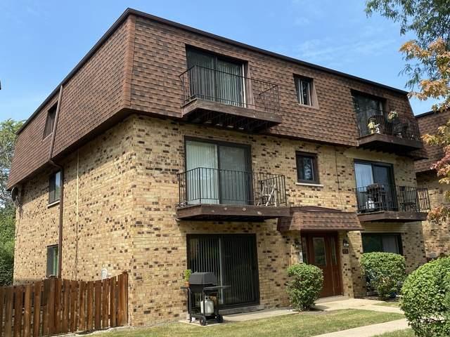 9710 Bianco Terrace 3E, Des Plaines, IL 60016 (MLS #10811690) :: Ryan Dallas Real Estate