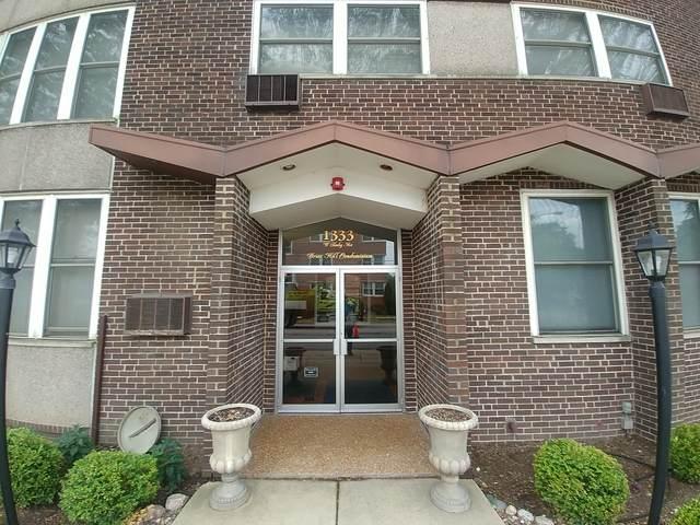1333 W Touhy Avenue #303, Park Ridge, IL 60068 (MLS #10811700) :: John Lyons Real Estate