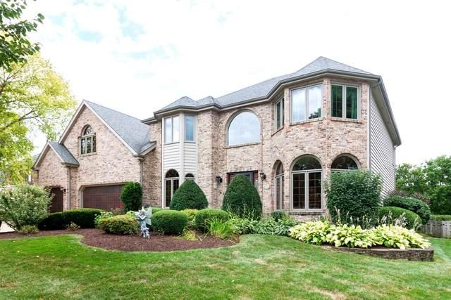 1820 Arabian Avenue, Naperville, IL 60565 (MLS #10811760) :: John Lyons Real Estate
