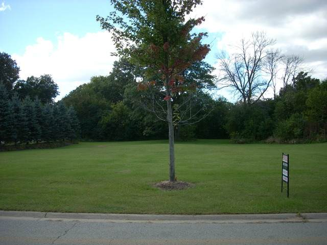 000 Skender Court S, Homer Glen, IL 60491 (MLS #10811882) :: Ryan Dallas Real Estate