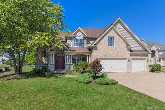 12112 Red Clover Court, Plainfield, IL 60585 (MLS #10812090) :: Property Consultants Realty