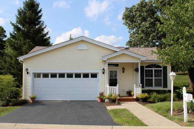 4004 Stirrup Court, Grayslake, IL 60030 (MLS #10812113) :: Property Consultants Realty