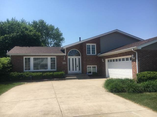 1040 Grand Mesa Avenue, New Lenox, IL 60451 (MLS #10812178) :: The Wexler Group at Keller Williams Preferred Realty