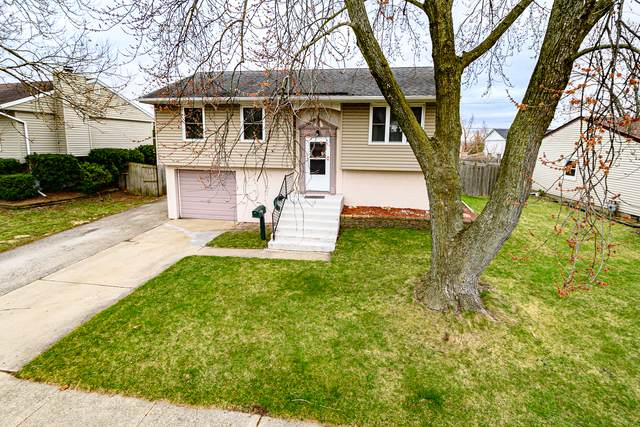 311 Emery Avenue, Romeoville, IL 60446 (MLS #10812827) :: The Wexler Group at Keller Williams Preferred Realty