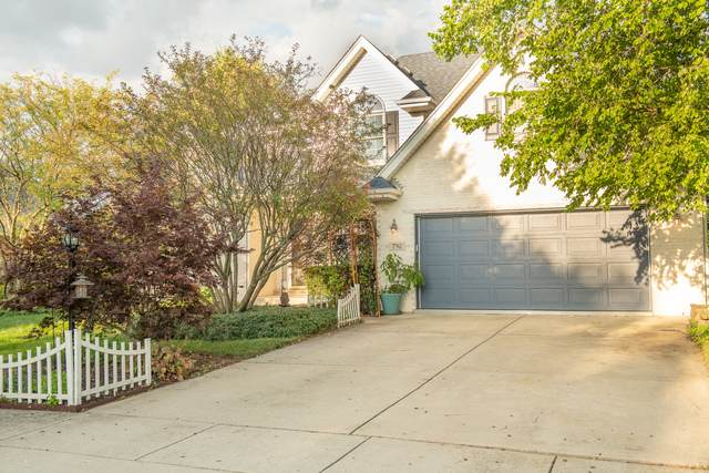 792 Downing Street, New Lenox, IL 60451 (MLS #10813209) :: The Wexler Group at Keller Williams Preferred Realty