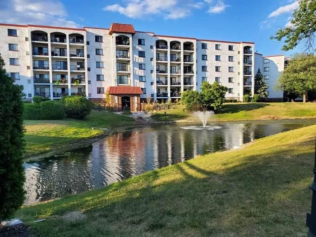 375 Plum Creek Drive #309, Wheeling, IL 60090 (MLS #10813531) :: The Wexler Group at Keller Williams Preferred Realty