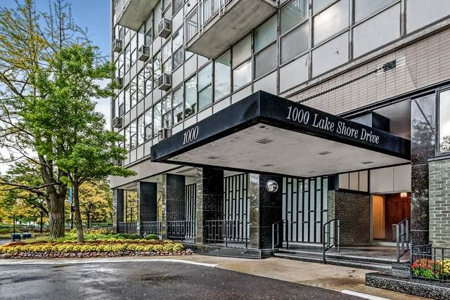 1000 N Lake Shore Drive #1102, Chicago, IL 60611 (MLS #10813784) :: Property Consultants Realty