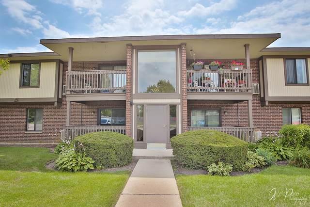 596 Somerset Lane #1, Crystal Lake, IL 60014 (MLS #10814046) :: Lewke Partners