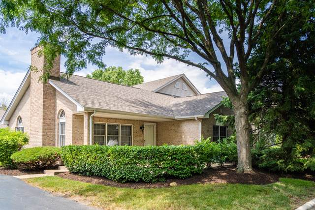 702 Feldner Court, Palos Heights, IL 60463 (MLS #10814105) :: The Wexler Group at Keller Williams Preferred Realty