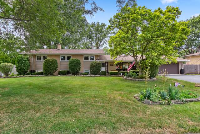 12412 S Austin Avenue, Palos Heights, IL 60463 (MLS #10814468) :: The Wexler Group at Keller Williams Preferred Realty