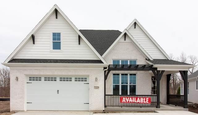 7266 Lakeside (Lot 32) Circle, Burr Ridge, IL 60527 (MLS #10814585) :: The Wexler Group at Keller Williams Preferred Realty