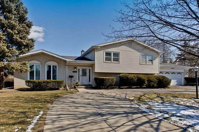 1009 S Haddow Avenue, Arlington Heights, IL 60005 (MLS #10814753) :: Suburban Life Realty