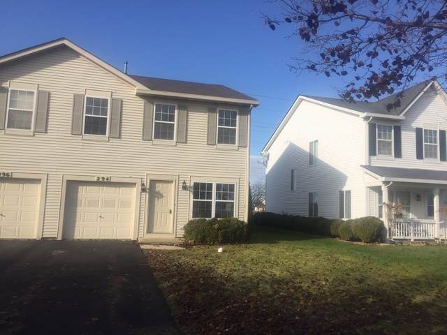 294 Richmond Drive, Romeoville, IL 60446 (MLS #10814822) :: The Wexler Group at Keller Williams Preferred Realty