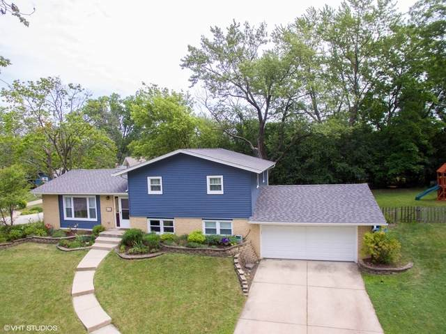 6535 Briargate Drive, Downers Grove, IL 60516 (MLS #10814860) :: The Wexler Group at Keller Williams Preferred Realty