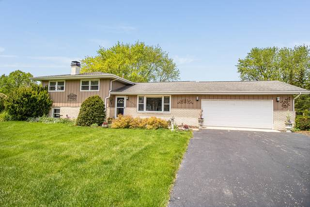 16408 S Mayleon Drive, Plainfield, IL 60586 (MLS #10814889) :: The Wexler Group at Keller Williams Preferred Realty