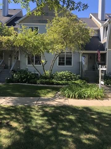 49 W Johnson Street, Palatine, IL 60067 (MLS #10815055) :: Lewke Partners
