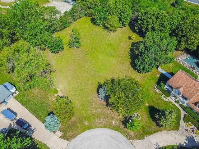 21920 S Burr Ridge Drive, Shorewood, IL 60404 (MLS #10815150) :: The Wexler Group at Keller Williams Preferred Realty